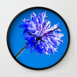 Blue fresh cornflower on the blue background Wall Clock