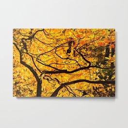 Golden Veins Of Autumn Metal Print