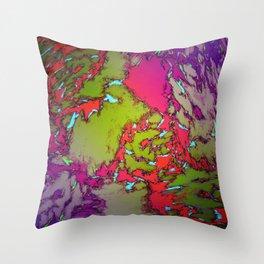 Evning gardens Throw Pillow