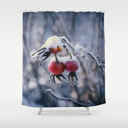 Rose hips and snow Shower Curtain