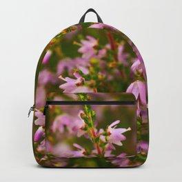 heather bush in violet flowers Backpack