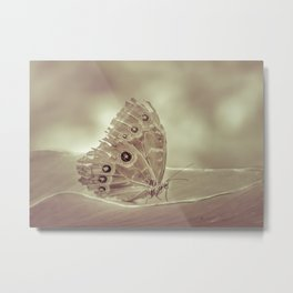 Patterned Wings Butterfly Over Leave Metal Print