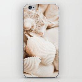 Sea snails and molluscs empty shells iPhone Skin