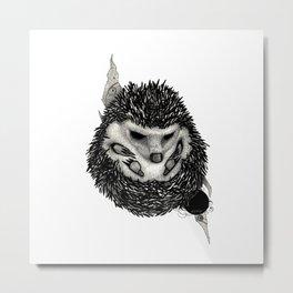 H3D93H09 (Hedgehog) Metal Print
