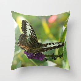 Blue Clipper Butterfly 2 Throw Pillow