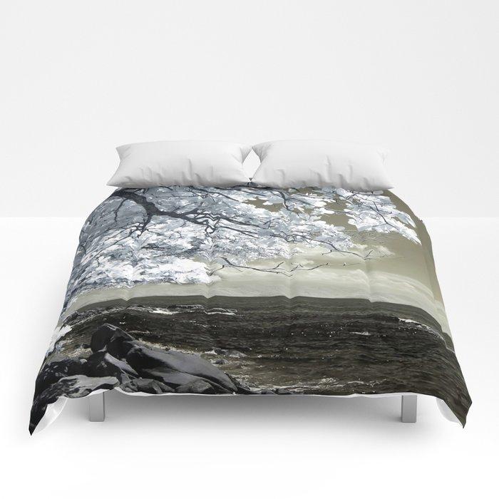 Coast 14 Comforters