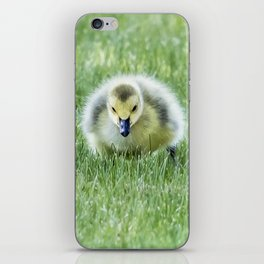 Gosling iPhone Skin