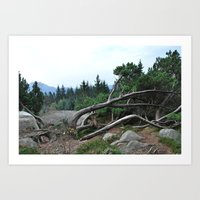 nordic Art Prints featuring Nordic by silviadevries