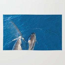 Dolphins with rainbow Rug