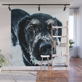Snow Dog // Cross Country Skiing Black and White Animal Photography Winter Puppy Ice Fur Wall Mural