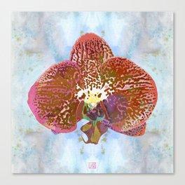 Watercolor Orchid Portrait #1 | Floral Art Print | Apricot Copper Canvas Print