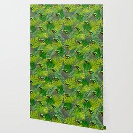 Frog Forest Wallpaper