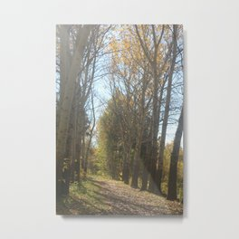 Tales of the autumn forest Metal Print