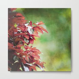 Shades of Early Autumn Metal Print