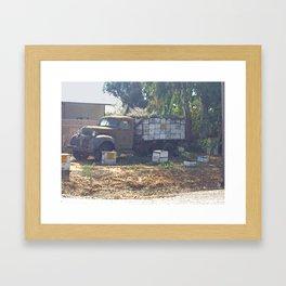 vintage bee farm Framed Art Print