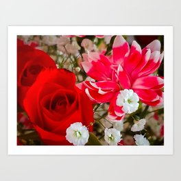 Dianthus and the Rose Art Print