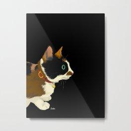 My cat in the dark Metal Print