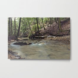 a stream in the woods Metal Print