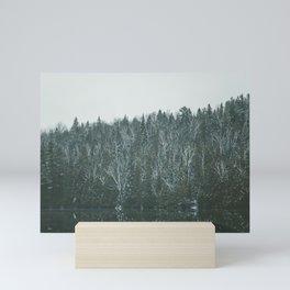 Mirror lake in winter Mini Art Print