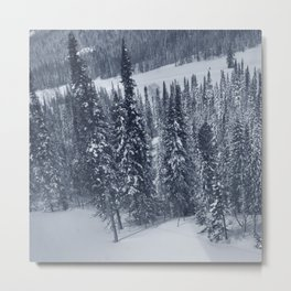 Winter day 27 Metal Print