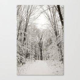Snow Trail Canvas Print
