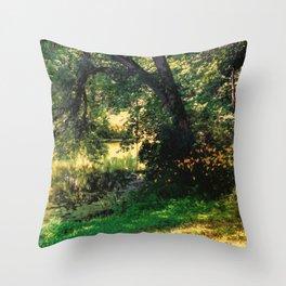 On Allerton Pond Throw Pillow
