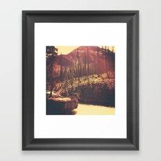 Burnt Forest II Framed Art Print
