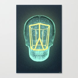 Think Outside the Scutoid Canvas Print