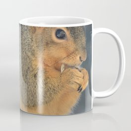 Squirrel Having a Munch Coffee Mug