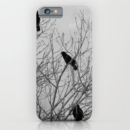 Murder Of Crows - Four iPhone Case