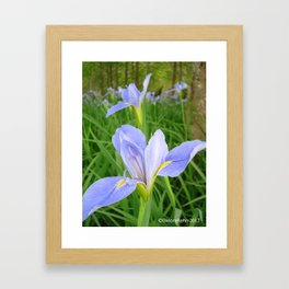 Jungle gardens Framed Art Print