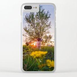 evening savor Clear iPhone Case