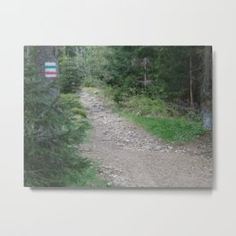 Trail in a mountains forest Metal Print