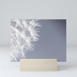 Sparkling dandelion with droplets - Flower water Mini Art Print
