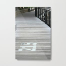 215Wide Metal Print