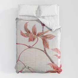 Japanese Maple Leaves Comforters
