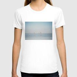 the Étang de Vaccarès ... T-shirt