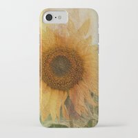 sunflower iPhone & iPod Cases featuring sunflower by VanessaGF