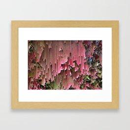 Flawed Flowers Framed Art Print
