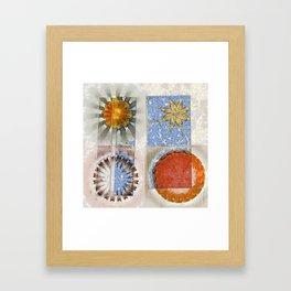 Goondie Fact Flower  ID:16165-095608-32641 Framed Art Print