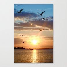 birds over the horizon Canvas Print