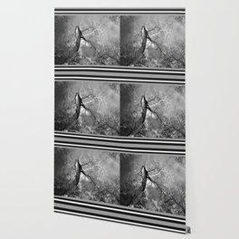 364 | austin Wallpaper