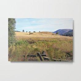 California Meadow Metal Print