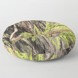 Turtle on a Log Floor Pillow