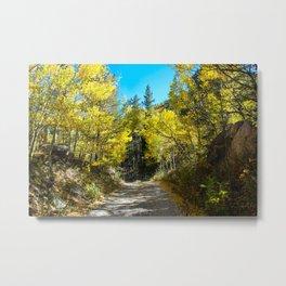 Fall Aspen Road Metal Print