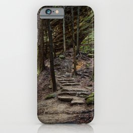 steps in the forest iPhone Case