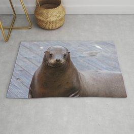 Portrait of a Sea Lion Rug