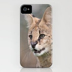 Serval Cat iPhone (4, 4s) Slim Case