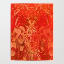 Beautiful red foliages - illustration of garden Poster