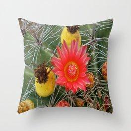 Barrel Cactus Flower and Fruit Throw Pillow